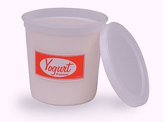 can-you-freeze-yogurt