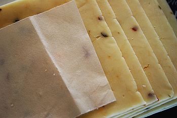 can-you-freeze-sliced-cheese