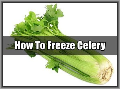 how-to-freeze-celery
